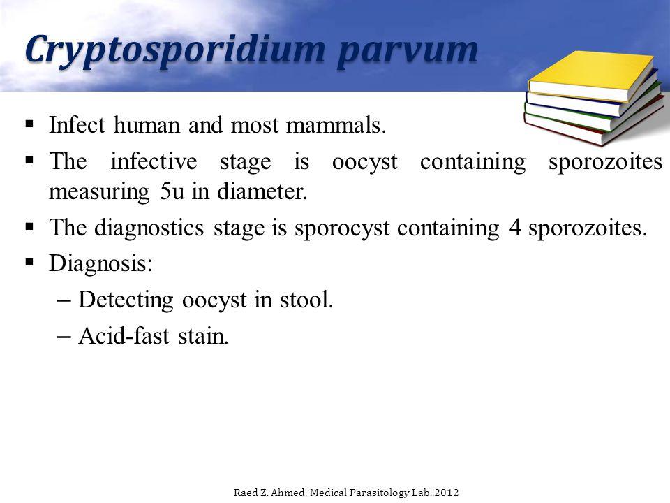 Cryptosporidium parvum Infect human and most mammals.
