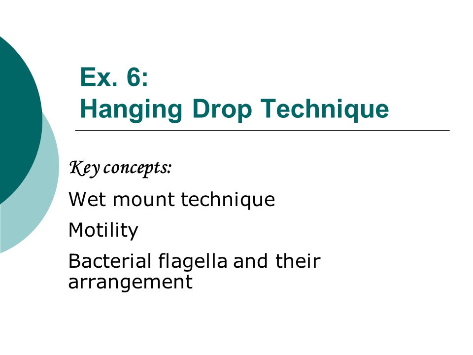 Cover glasses Depression slides Petroleum Jelly (Vasoline) Toothpicks Bacterial culture Motility Determination: Hanging Drop Method Materials needed: