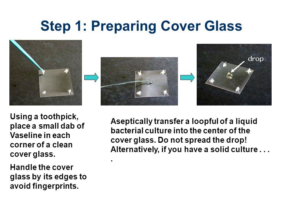 Step 2: Attaching Depression Slide Vaseline attaching cover glass to depression slide Carefully lower depression slide with depression facing down.