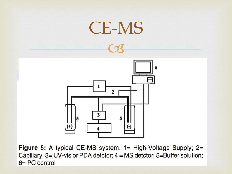 CE-MS
