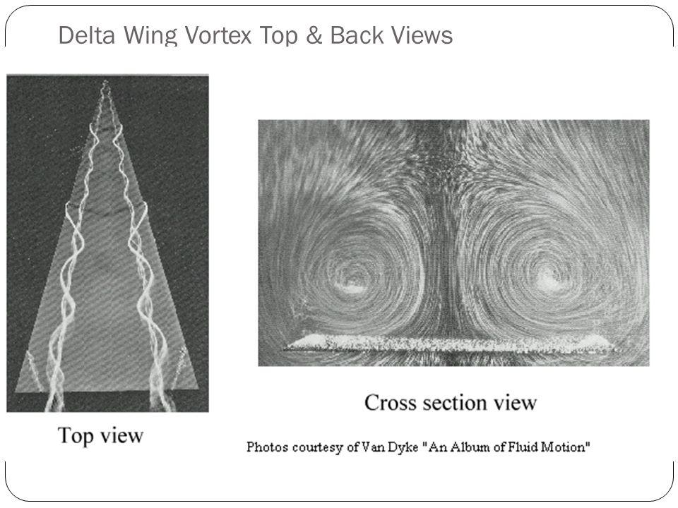 Delta Wing Vortex Top & Back Views