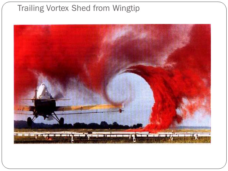 Trailing Vortex Shed from Wingtip