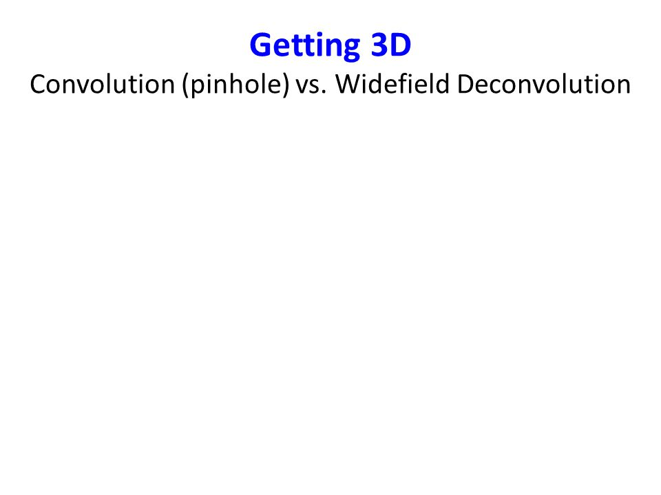 Different Deconvolution Algorithms The original (raw) image is illustrated in Figure 3(a).