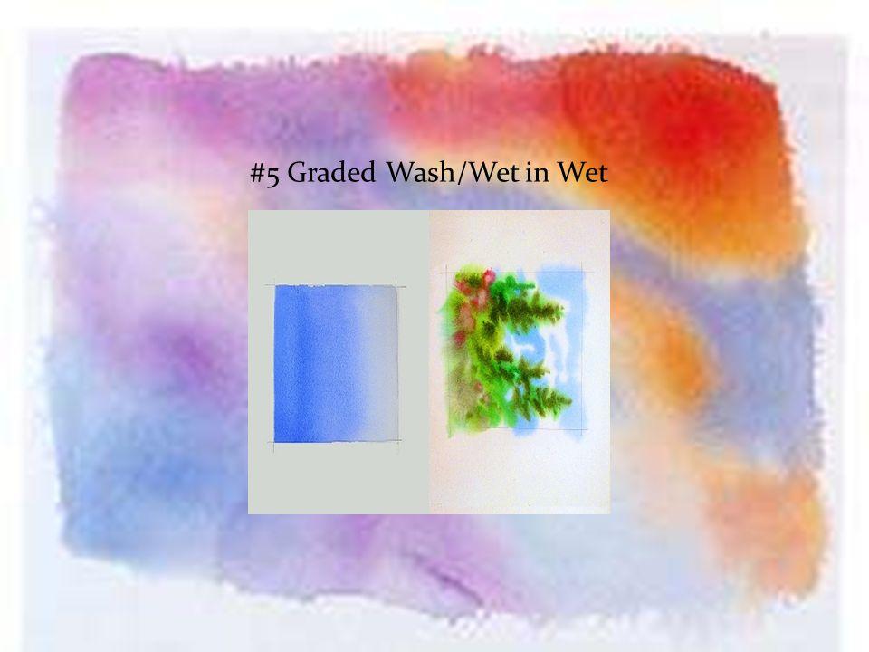 #5 Graded Wash/Wet in Wet