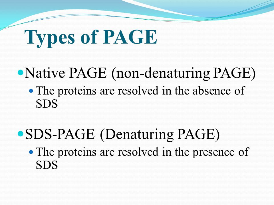 Types of PAGE Native PAGE (non-denaturing PAGE) The proteins are resolved in the absence of SDS SDS-PAGE (Denaturing PAGE) The proteins are resolved i