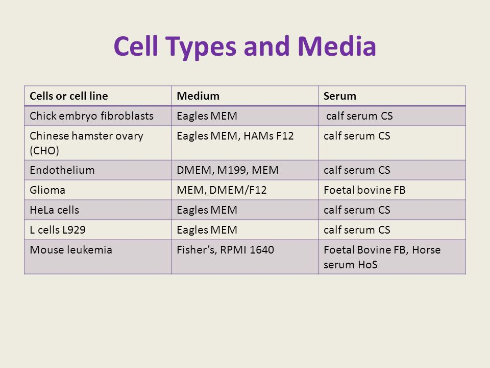 Cell Types and Media Cells or cell lineMediumSerum Chick embryo fibroblastsEagles MEM calf serum CS Chinese hamster ovary (CHO) Eagles MEM, HAMs F12ca
