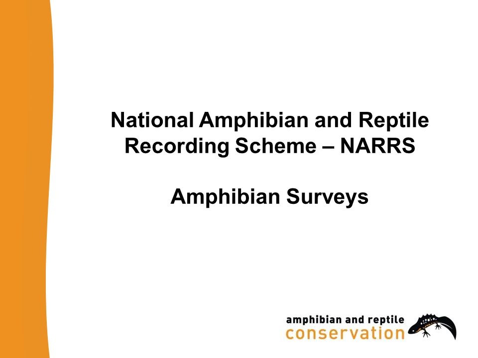 National Amphibian and Reptile Recording Scheme – NARRS Amphibian Surveys