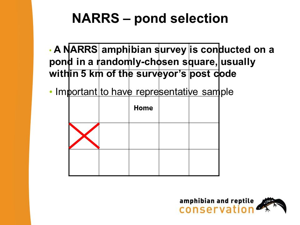 NARRS – pond selection A NARRS amphibian survey is conducted on a pond in a randomly-chosen square, usually within 5 km of the surveyors post code Important to have representative sample Home