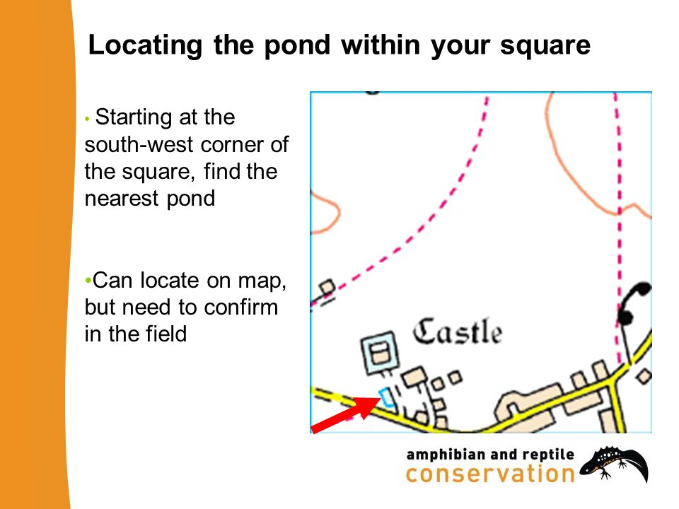 Locating the pond within your square Starting at the south-west corner of the square, find the nearest pond Can locate on map, but need to confirm in