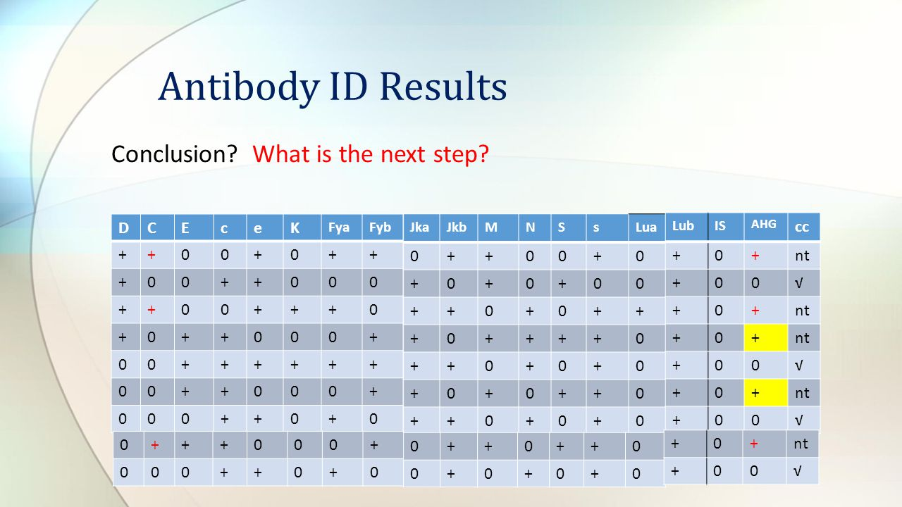 Conclusion? What is the next step? Antibody ID Results DCEceK FyaFyb ++00+0++ +00++000 ++00+++0 +0++000+ 00++++++ 00++000+ 000++0+0 JkaJkbMNSsLua 0++0