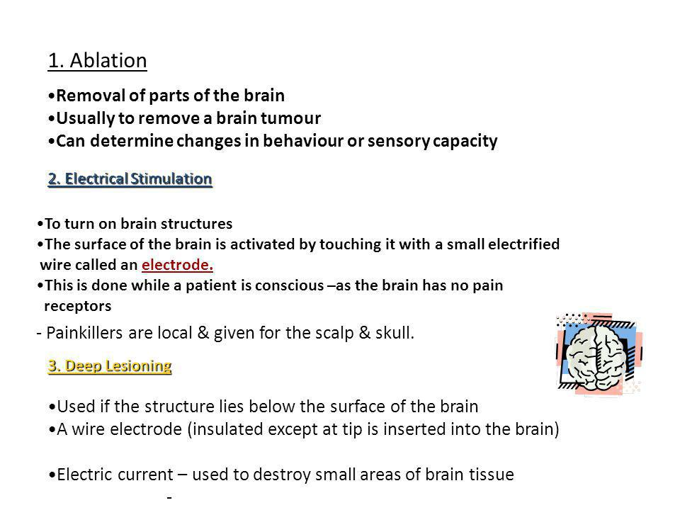 1. Ablation Removal of parts of the brain Usually to remove a brain tumour Can determine changes in behaviour or sensory capacity 2. Electrical Stimul