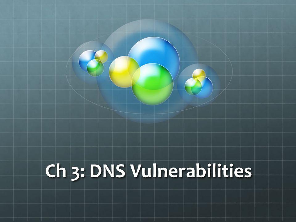 Ch 3: DNS Vulnerabilities