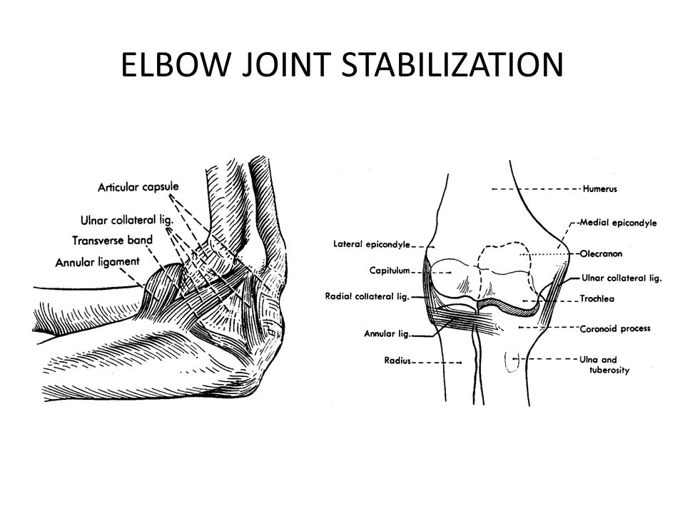 ELBOW JOINT STABILIZATION