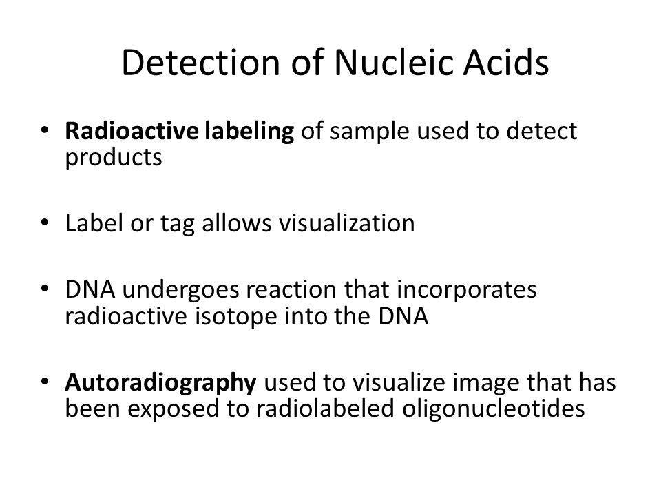 Detection of Nucleic Acids Radioactive labeling of sample used to detect products Label or tag allows visualization DNA undergoes reaction that incorporates radioactive isotope into the DNA Autoradiography used to visualize image that has been exposed to radiolabeled oligonucleotides