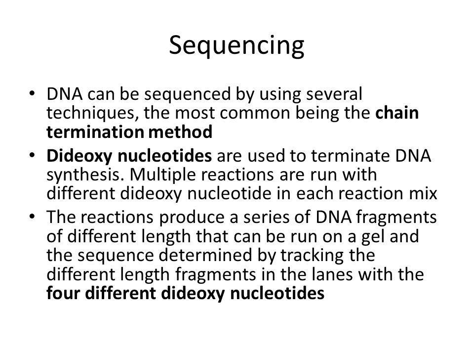 Sequencing DNA can be sequenced by using several techniques, the most common being the chain termination method Dideoxy nucleotides are used to terminate DNA synthesis.