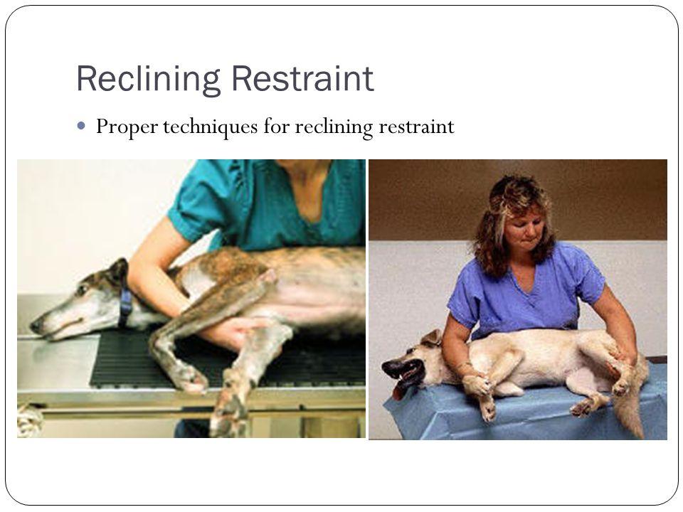 Reclining Restraint Proper techniques for reclining restraint