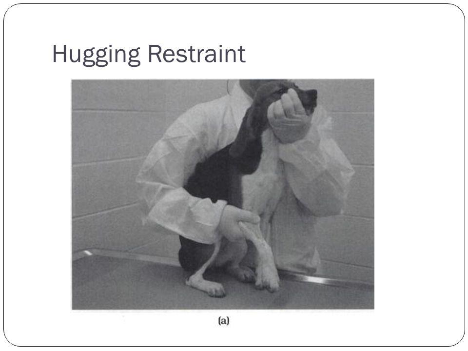 Hugging Restraint