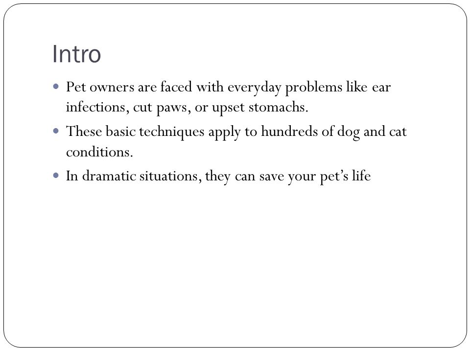 Intro Pet owners are faced with everyday problems like ear infections, cut paws, or upset stomachs.