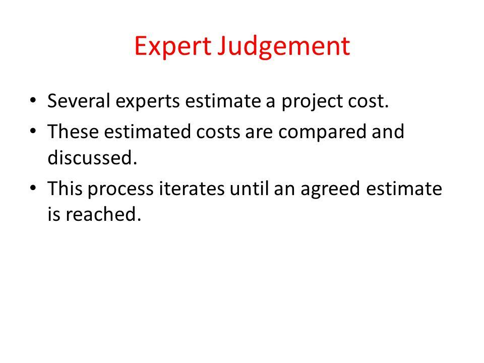 Expert Judgement Several experts estimate a project cost.