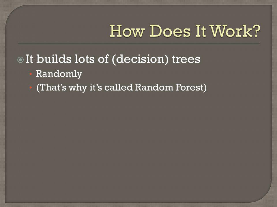 It builds lots of (decision) trees Randomly (Thats why its called Random Forest)
