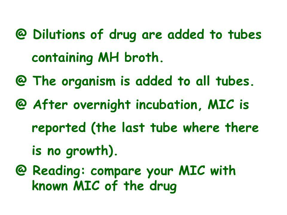 @ Dilutions of drug are added to tubes containing MH broth.