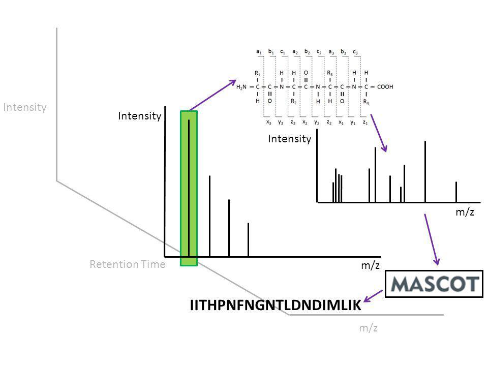 Intensity Retention Time m/z Intensity IITHPNFNGNTLDNDIMLIK Intensity m/z