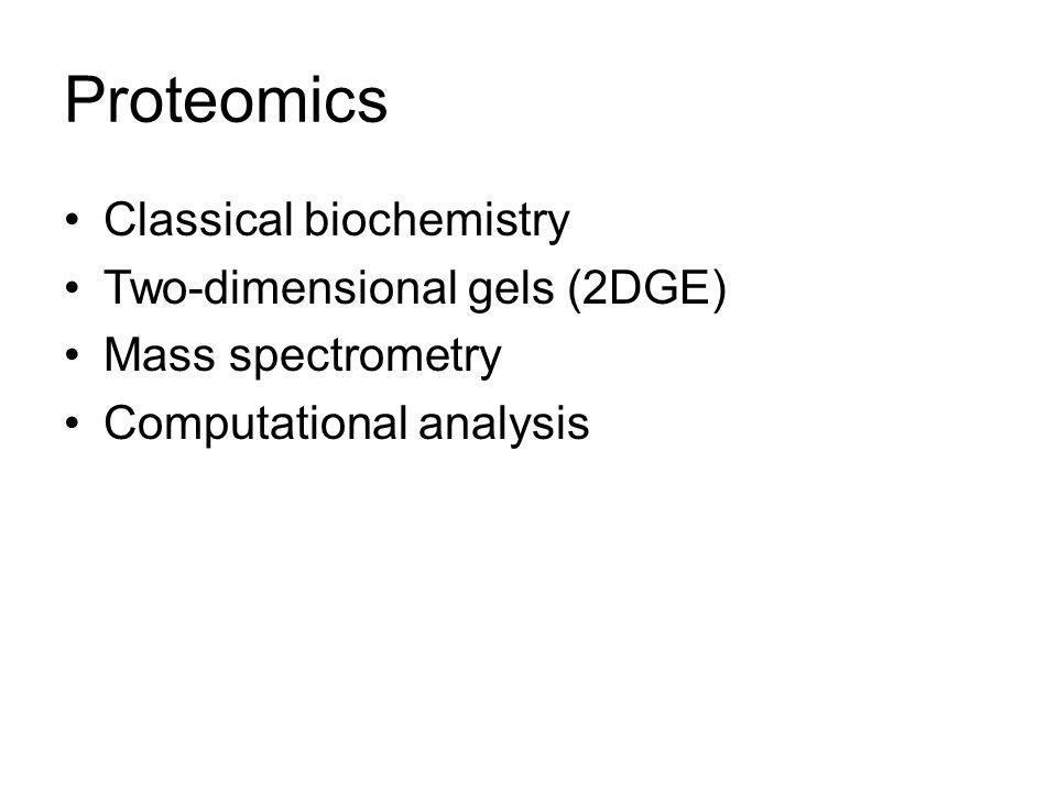 Methods in Proteomics Separation –Gels –Immunochemistry –Chromatography Identification –Immunochemistry –Mass spectrometry Quantitation –All of the above
