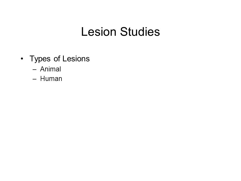 Lesion Studies Types of Lesions –Animal –Human