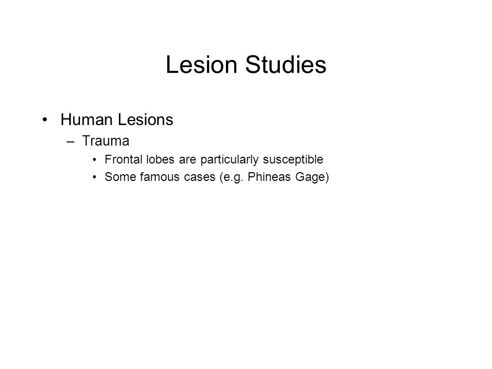 Lesion Studies Human Lesions –Trauma Frontal lobes are particularly susceptible Some famous cases (e.g. Phineas Gage)