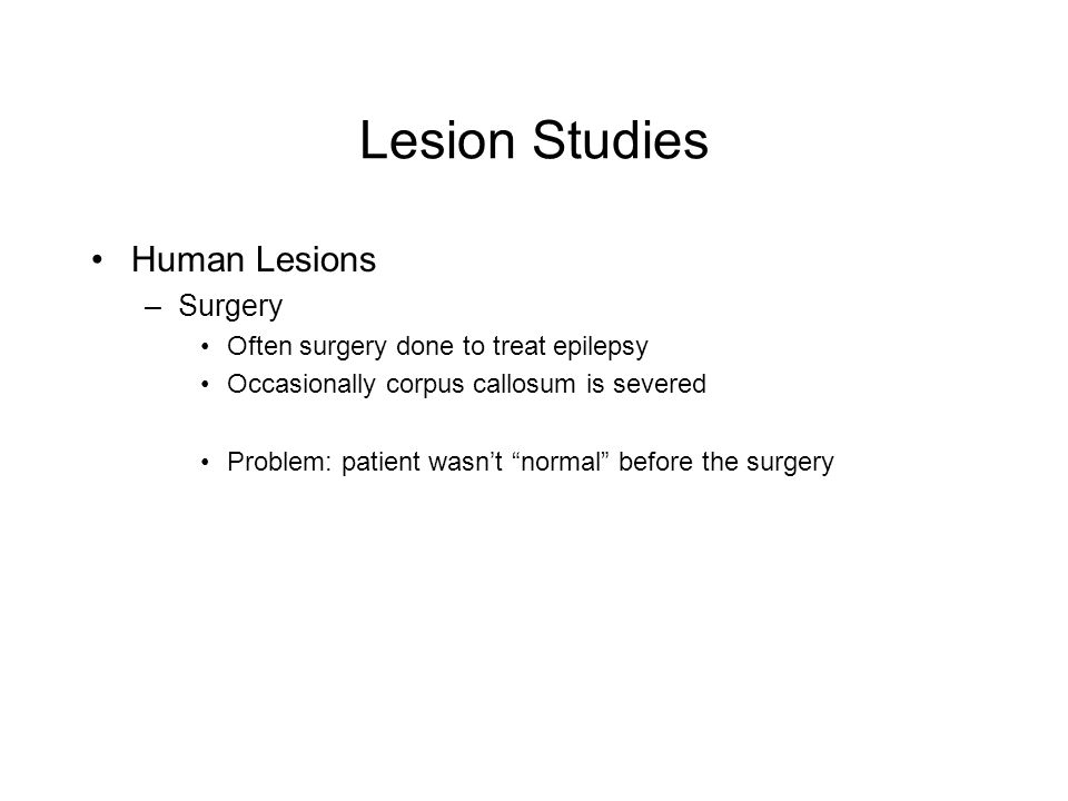 Lesion Studies Human Lesions –Surgery Often surgery done to treat epilepsy Occasionally corpus callosum is severed Problem: patient wasnt normal before the surgery