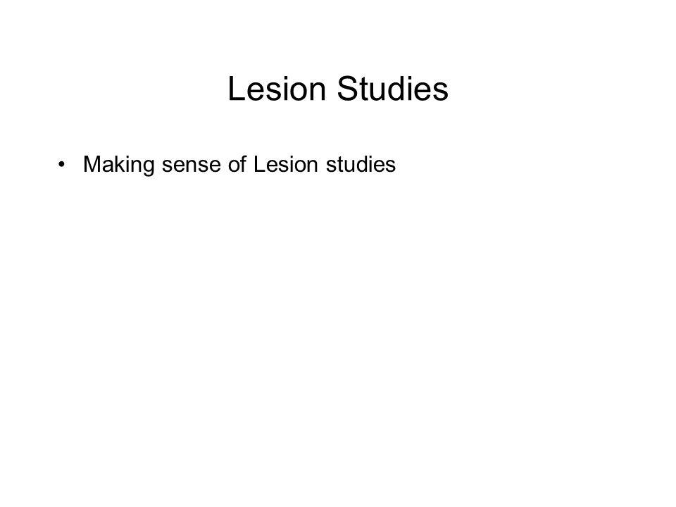 Lesion Studies Making sense of Lesion studies