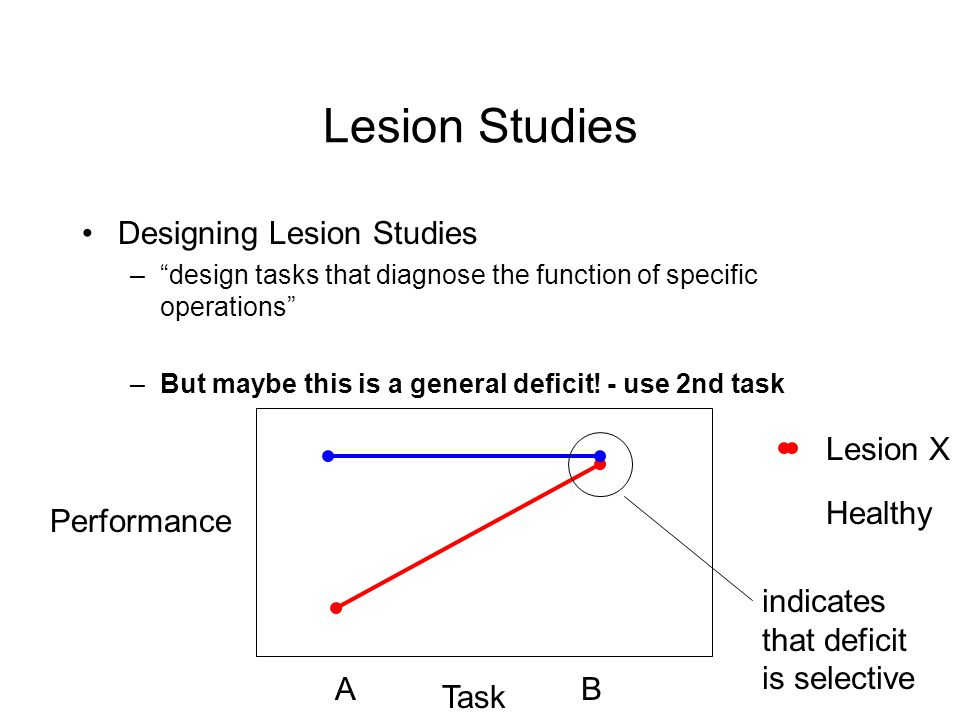 Lesion Studies Designing Lesion Studies –design tasks that diagnose the function of specific operations –But maybe this is a general deficit.