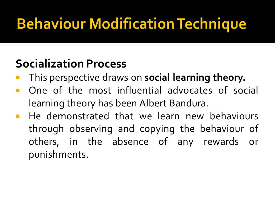 Socialization Process This perspective draws on social learning theory. One of the most influential advocates of social learning theory has been Alber