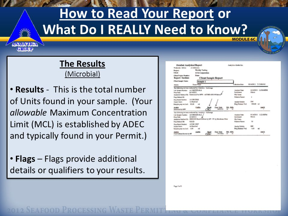 25 How to Read Your Report or What Do I REALLY Need to Know.