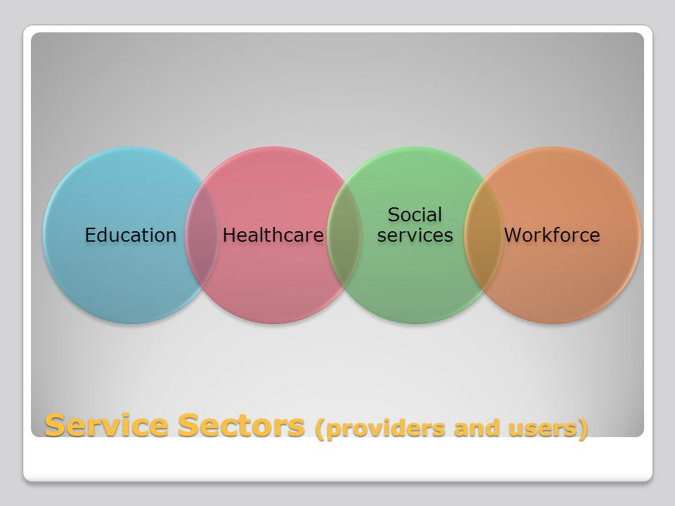 Service Sectors (providers and users) EducationHealthcare Social servicesWorkforce
