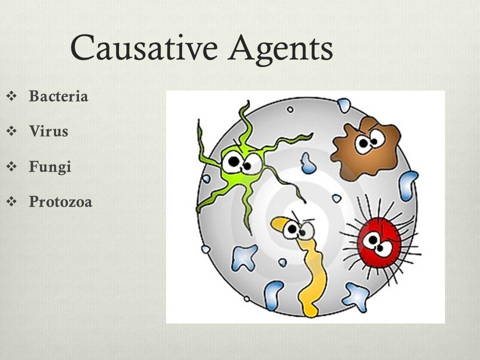 Causative Agents Bacteria Virus Fungi Protozoa