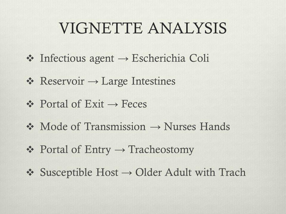VIGNETTE ANALYSIS Infectious agent Escherichia Coli Reservoir Large Intestines Portal of Exit Feces Mode of Transmission Nurses Hands Portal of Entry