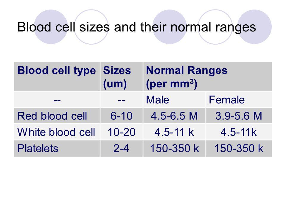 Blood cell typeSizes (um) Normal Ranges (per mm 3 ) -- MaleFemale Red blood cell6-104.5-6.5 M3.9-5.6 M White blood cell10-204.5-11 k Platelets2-4150-3