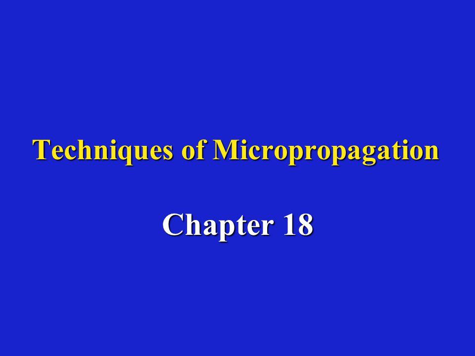 Micrografting