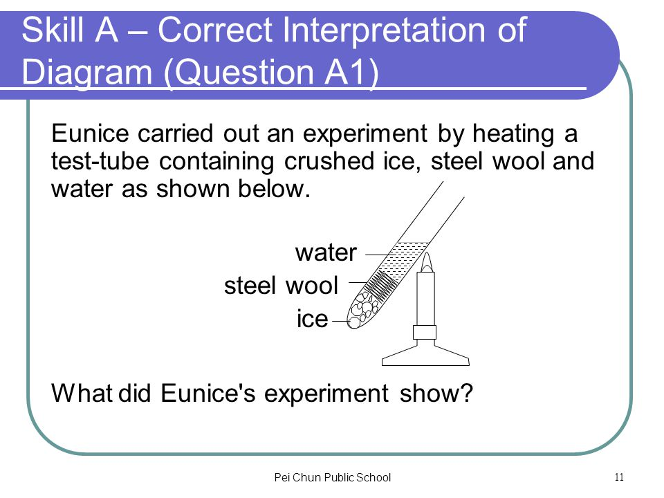 Pei Chun Public School11 Skill A – Correct Interpretation of Diagram (Question A1) Eunice carried out an experiment by heating a test-tube containing