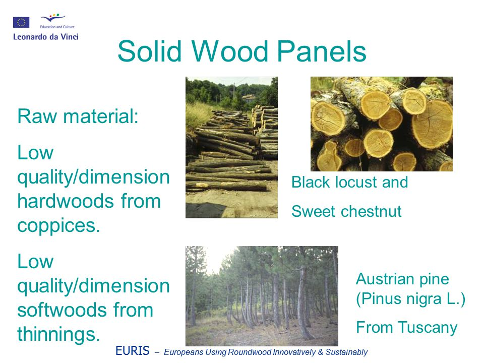 EURIS – Europeans Using Roundwood Innovatively & Sustainably Solid Wood Panels Raw material: Low quality/dimension hardwoods from coppices. Low qualit