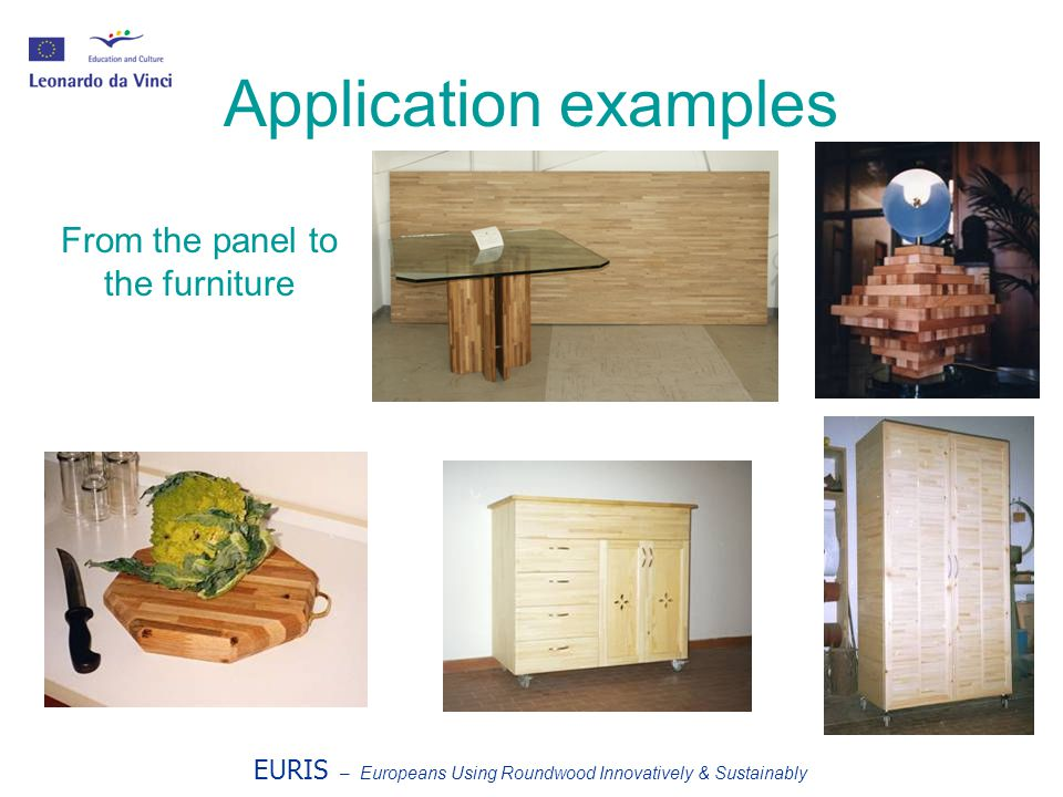 EURIS – Europeans Using Roundwood Innovatively & Sustainably Application examples From the panel to the furniture