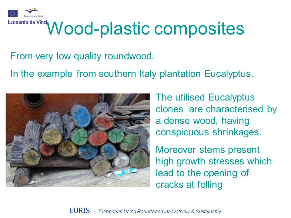 EURIS – Europeans Using Roundwood Innovatively & Sustainably Wood-plastic composites From very low quality roundwood. In the example from southern Ita