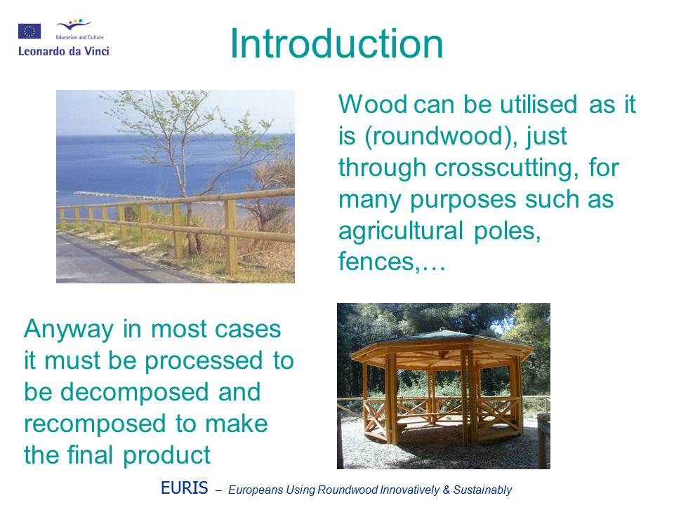 EURIS – Europeans Using Roundwood Innovatively & Sustainably Introduction EURIS – Europeans Using Roundwood Innovatively & Sustainably The decomposition of roundwood to produce semi-finite needs specific mechanical techniques The recomposition of semi- finite to final products needs assembling techniques, mostly glues.