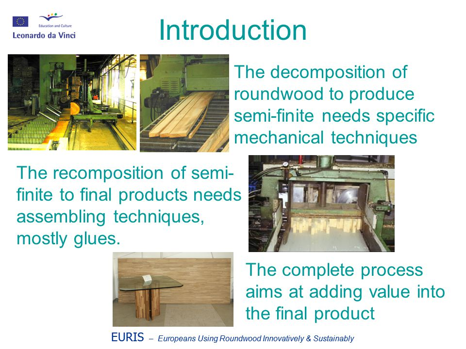 EURIS – Europeans Using Roundwood Innovatively & Sustainably Production system