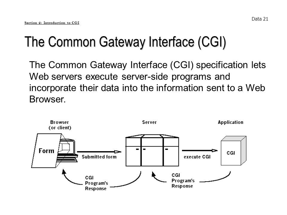 The Common Gateway Interface (CGI) Data 21 The Common Gateway Interface (CGI) specification lets Web servers execute server-side programs and incorpor