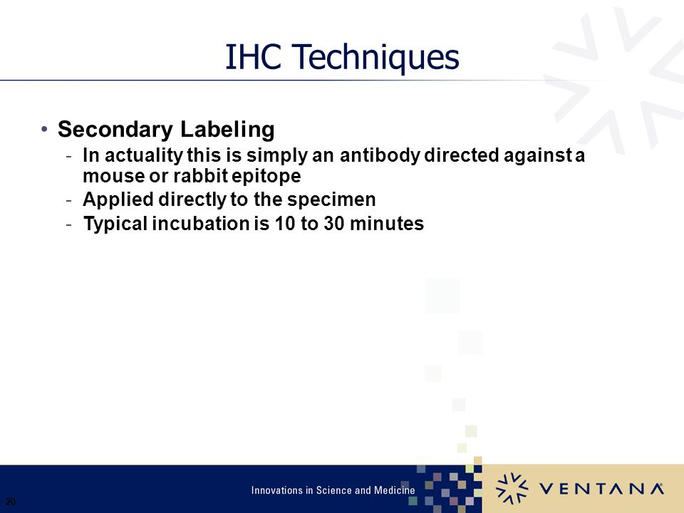 20 IHC Techniques Secondary Labeling -In actuality this is simply an antibody directed against a mouse or rabbit epitope -Applied directly to the spec