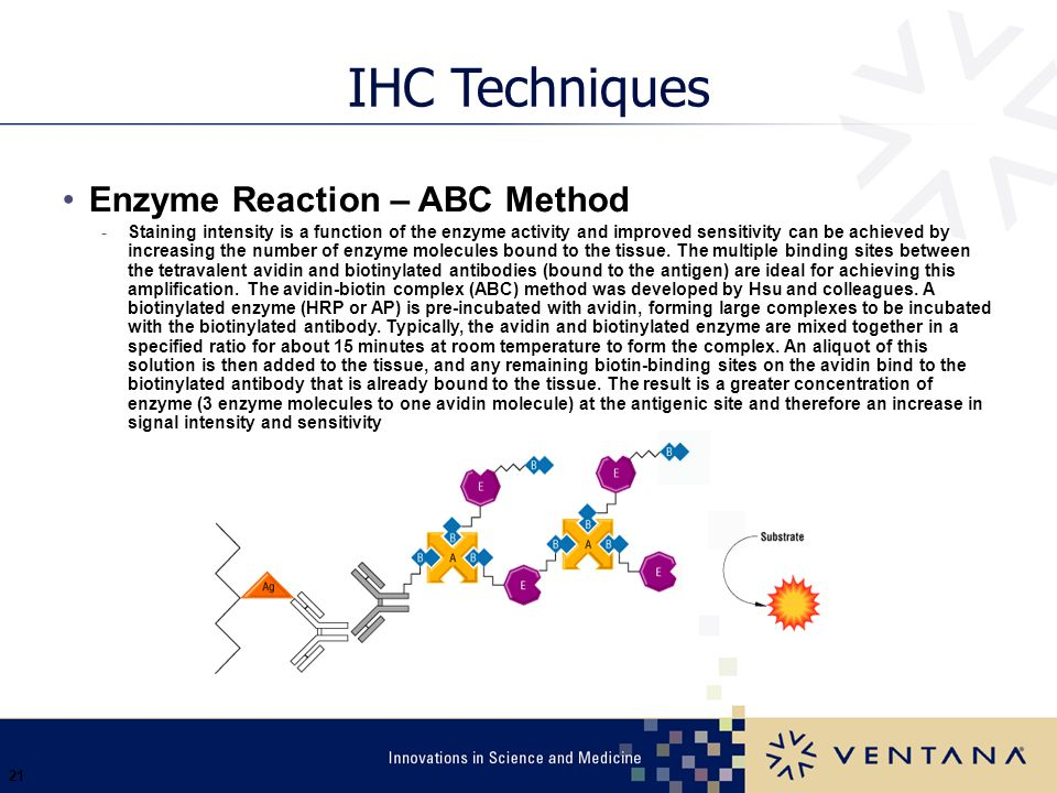 21 IHC Techniques Enzyme Reaction – ABC Method -Staining intensity is a function of the enzyme activity and improved sensitivity can be achieved by in