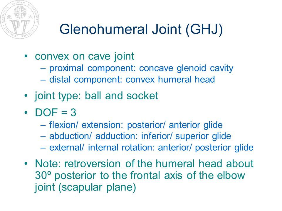 Glenohumeral Joint (GHJ) convex on cave joint –proximal component: concave glenoid cavity –distal component: convex humeral head joint type: ball and socket DOF = 3 –flexion/ extension: posterior/ anterior glide –abduction/ adduction: inferior/ superior glide –external/ internal rotation: anterior/ posterior glide Note: retroversion of the humeral head about 30º posterior to the frontal axis of the elbow joint (scapular plane)