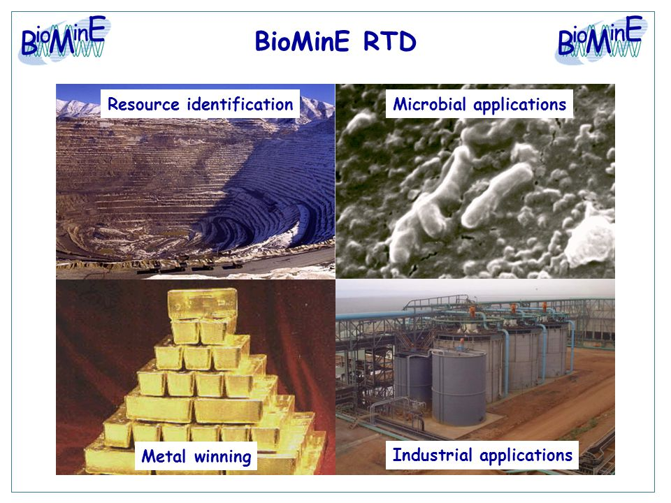 BioMinE RTD Resource identificationMicrobial applications Industrial applications Metal winning